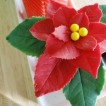 Poinsettia Joconde