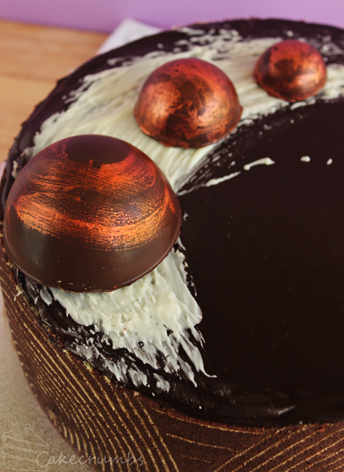 Cakecrumbs' Metallic Chocolate Tutorial 00