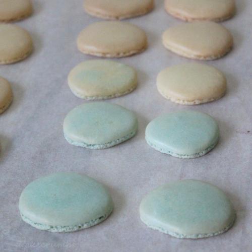 Cakecrumbs' Easter Macarons 05
