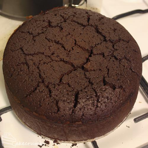 Cakecrumbs' Mudcake 02