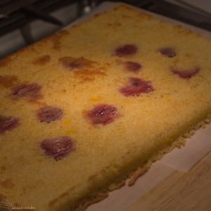 Cakecrumbs Passionfruit Entremet-3