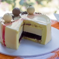 Honey Passionfruit Entremet